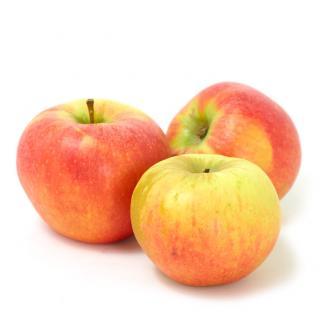 Äpfel Elstar - regional
