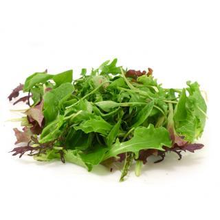 Babyleaf-Salatmix
