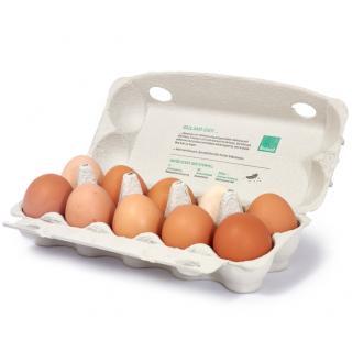 Eier 10 Stück